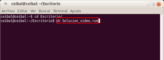 Solucon_video_Scratch_terminal3.png